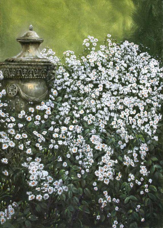 Jasmine Terrace: Flower Paintings Gallery By Artist David Crane